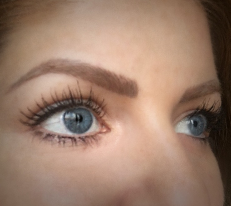 The Lash Roomor How To Get Perfect Brows